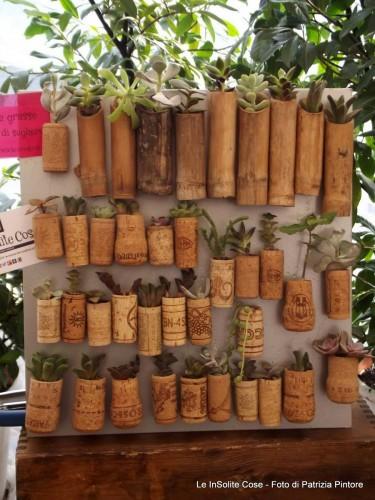 Tappi di sughero con calamita e vere piante grasse