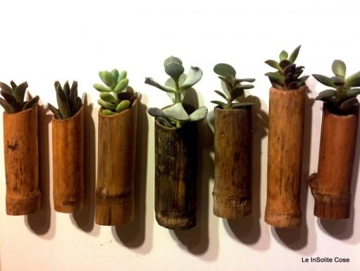 Succulents in a bamboo - Piante grasse in canna di bambù con magnete - le insolite cose 2014 (1)