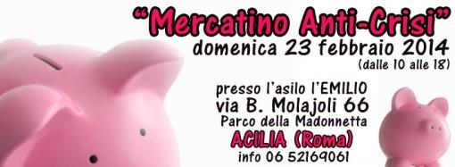 mercatino-anti-crisi-23-febbraio-2014-presso-l'emilio---parco-della-madonnetta---acilia