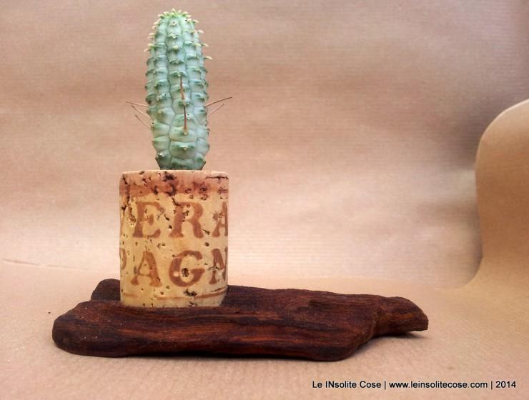 Cactus in Tappo di sughero su corteccia di legno intagliato - Le inSolite Cose 2014