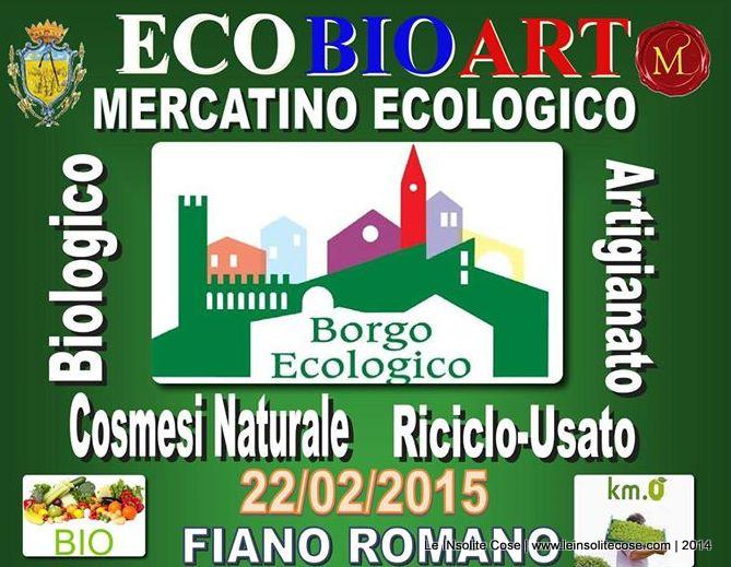 Le INsolite Cose al mercatino ecologico di Fiano Romano all'interno del Castello Orsini 22 febbraio 2015