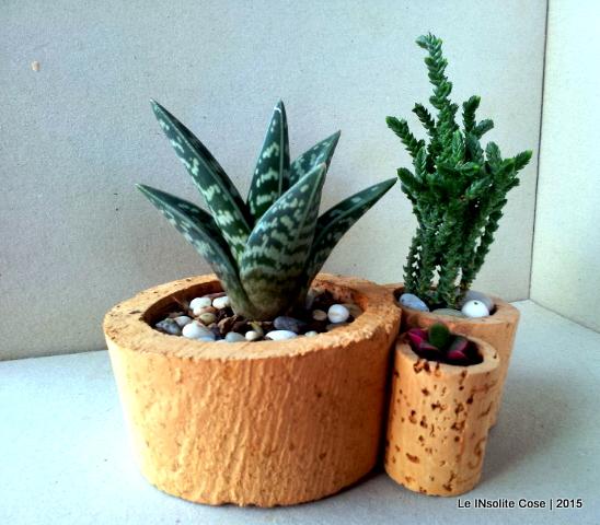 Composizioni con piante grasse e tappi di sughero - Le INsolite Cose