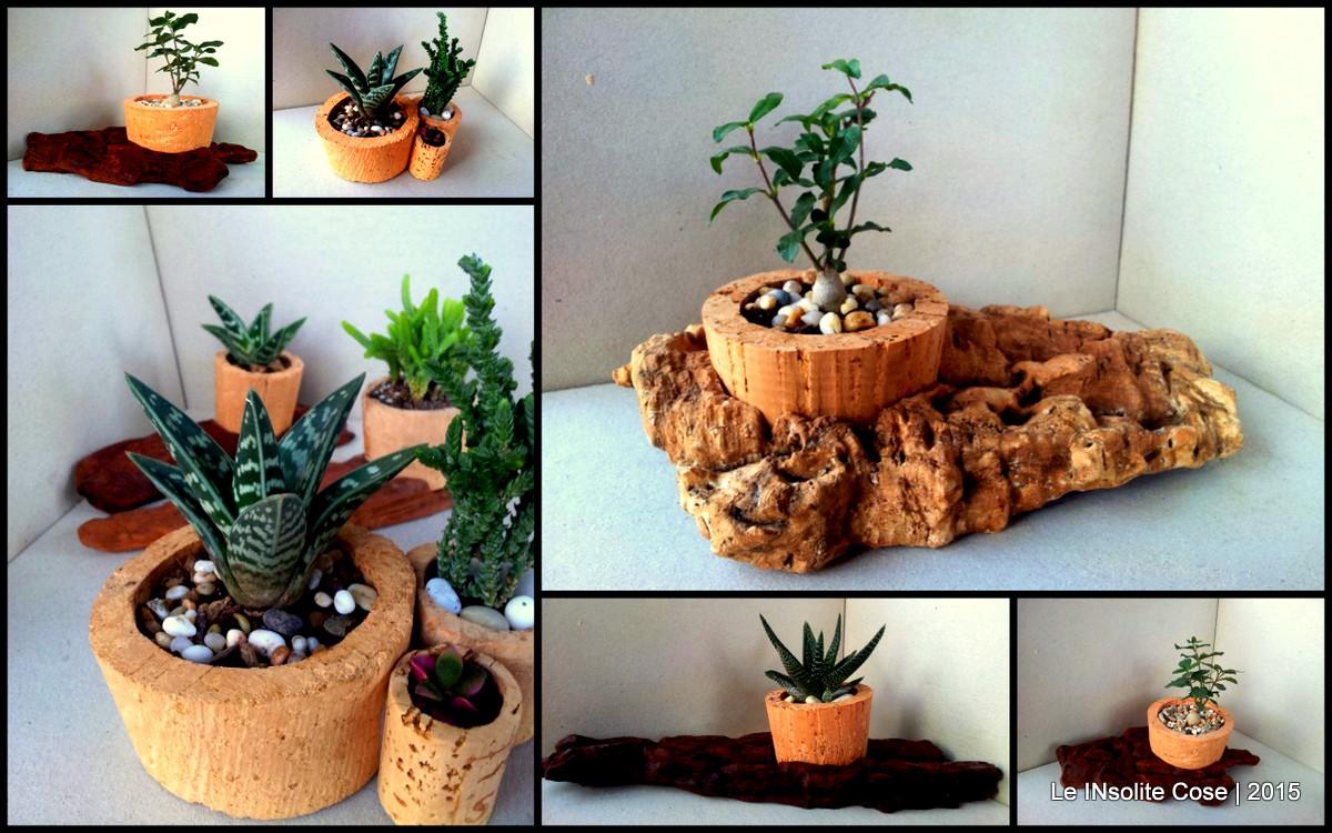 Composizioni In Vetro Piante Grasse : Composizioni con piante grasse e tappi di sughero le