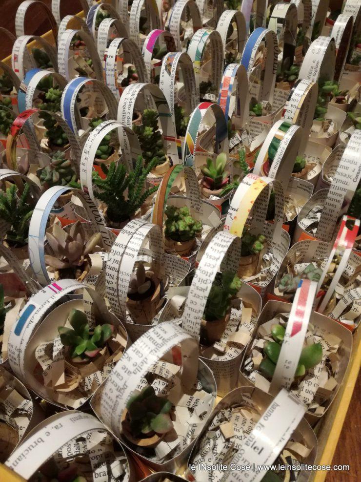 Bomboniera INsolita: piante grasse in tappo di sughero con calamita